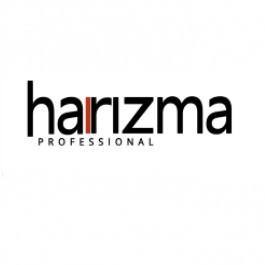 Фен профессиональный Harizma